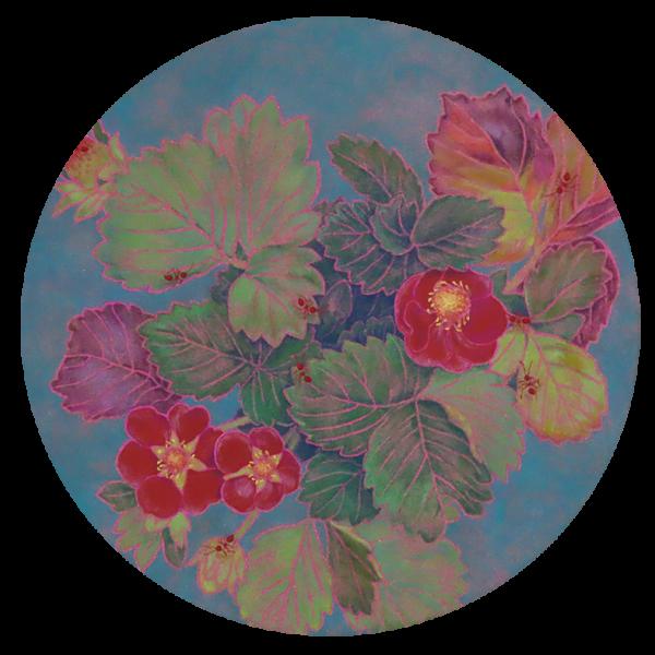 赤い花の苺