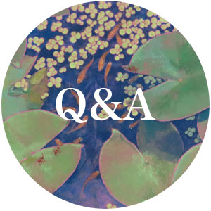 Q&Aタイトル